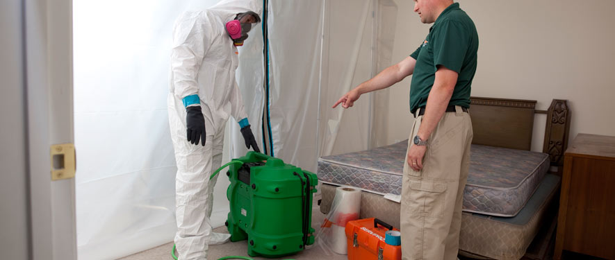 Moorhead, MN mold removal process